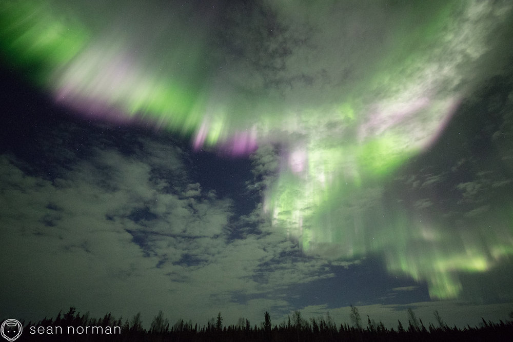 Yellowknife Aurora Blog - Aurora Hunting Tour - 6.jpg