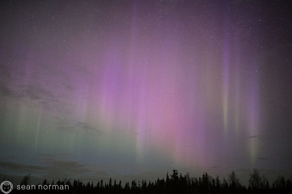 Yellowknife Aurora Blog - Aurora Hunting Tour - 9.jpg