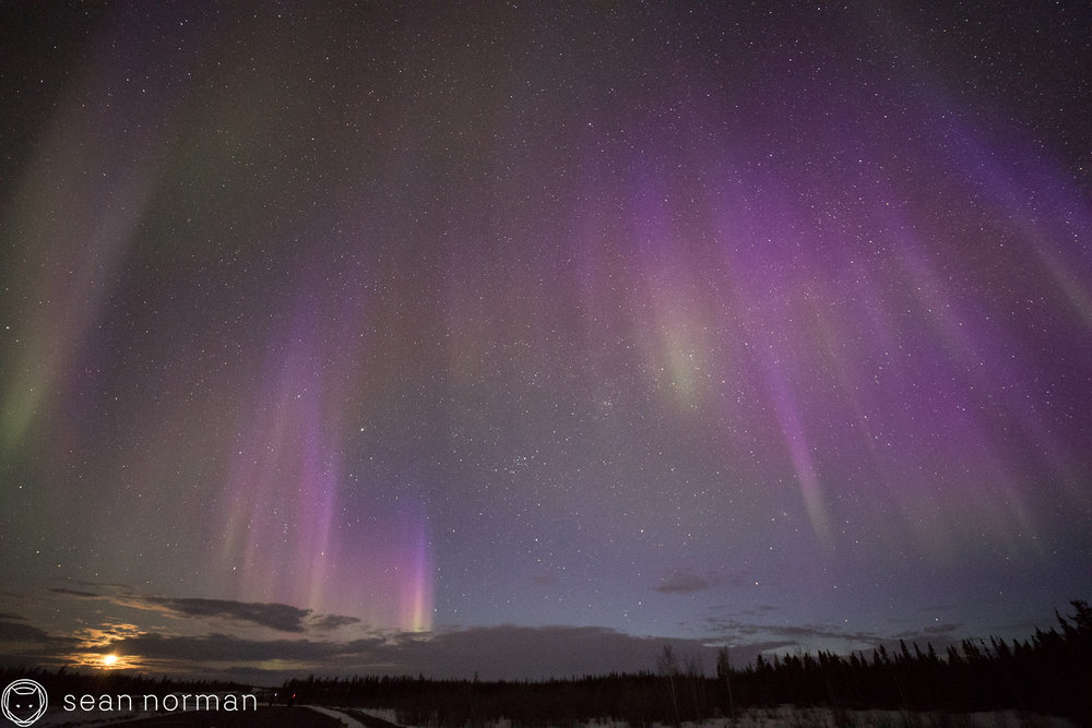 Yellowknife Aurora Blog - Aurora Hunting Tour - 10.jpg