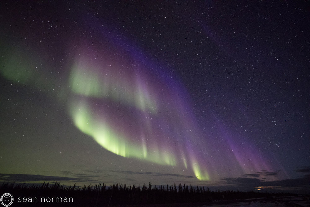 Yellowknife Aurora Blog - Aurora Hunting Tour - 11.jpg