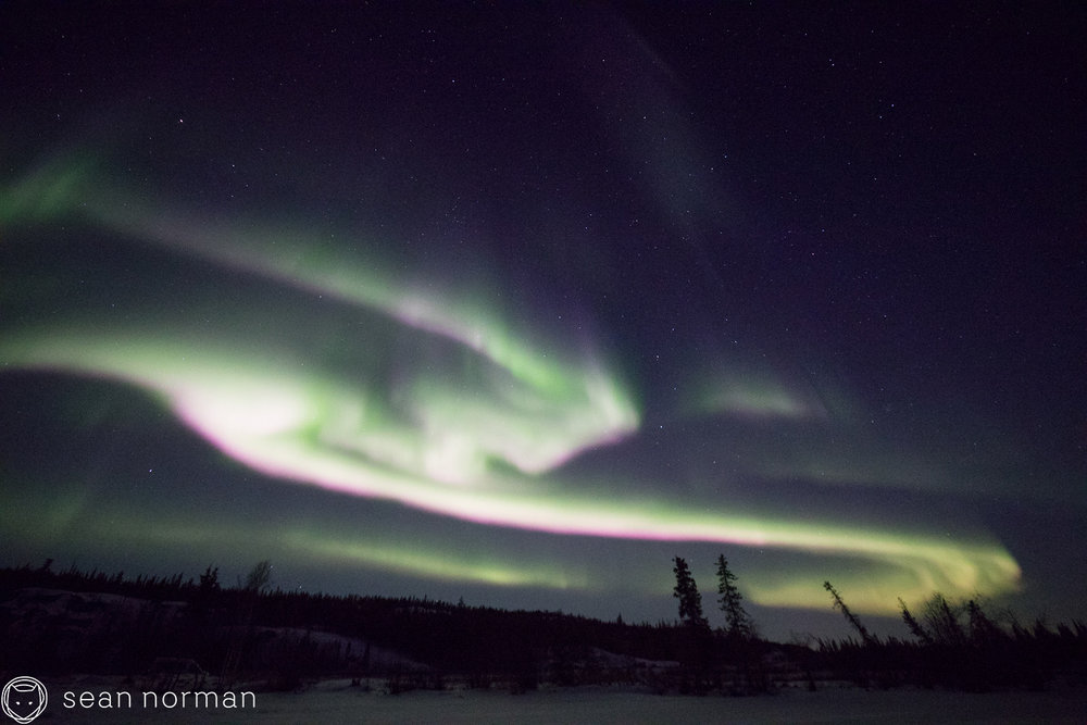 Yellowknife Northern Lights Guide - Canada Aurora Tour - Aurora Hunting - 3.jpg