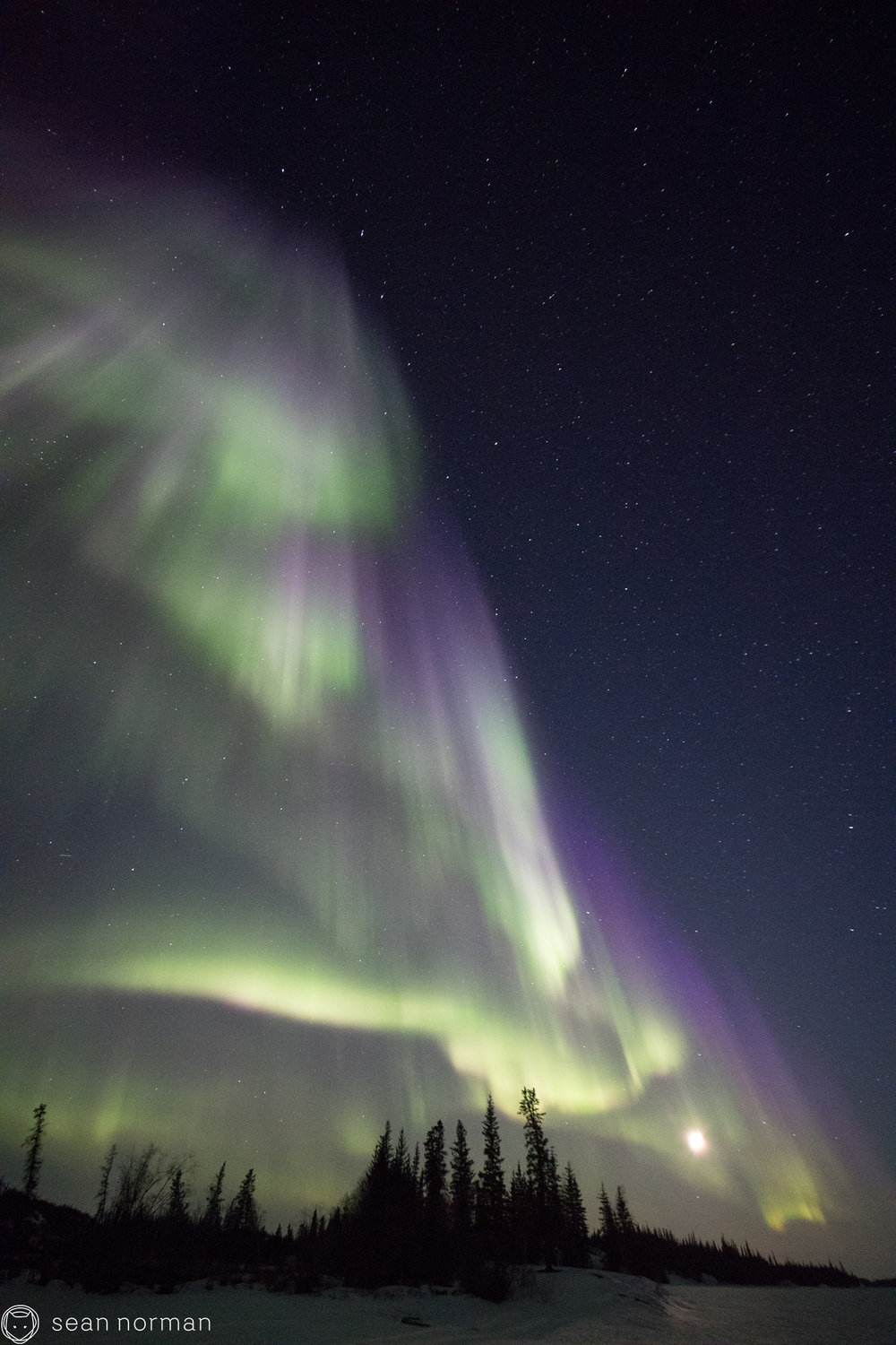 Yellowknife Northern Lights Guide - Canada Aurora Tour - Aurora Hunting - 5.jpg