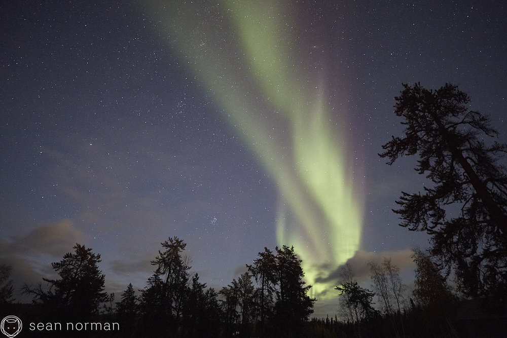 Sean Norman Yellowknife Aurora Chaser - Northern Light Tour Guide - 03.jpg