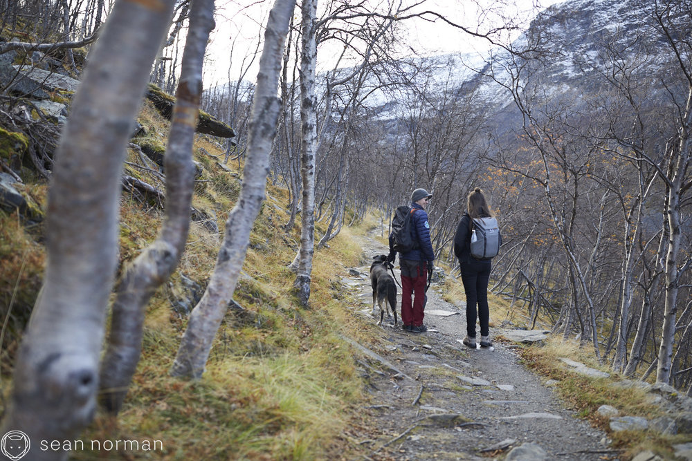 Sean Norman - Tromsø Norway Aurora Chasing - 8.jpg