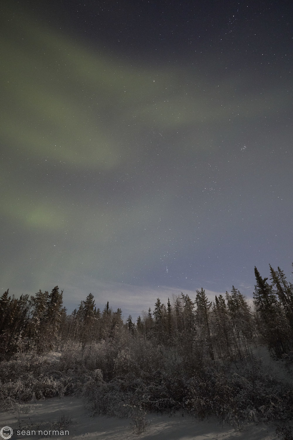 Sean Norman - Yellowknife Aurora Chasing - Northern Lights Tour Guide - 4.jpg