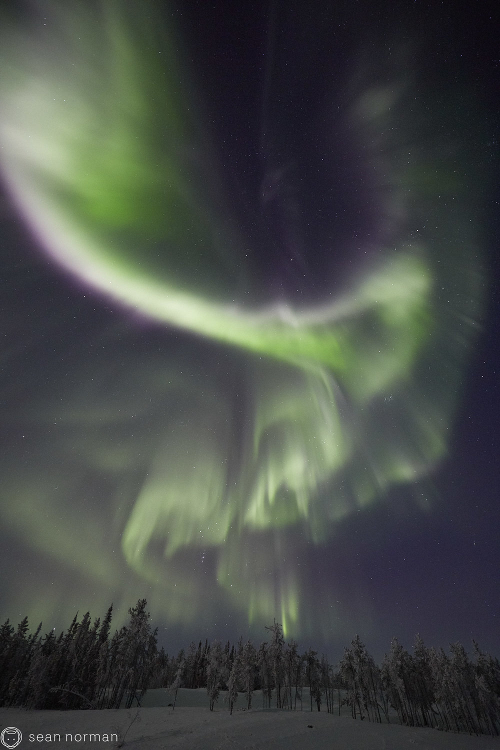 Sean Norman - Yellowknife Aurora Chasing - Northern Lights Tour Guide - 3.jpg