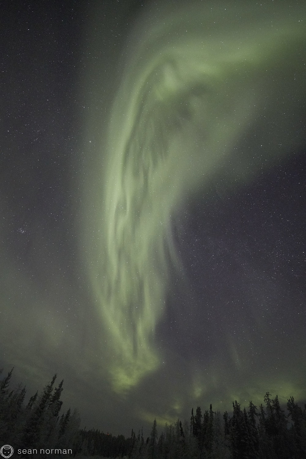 Sean Norman - Yellowknife Aurora Chasing - Northern Lights Tour Guide - 5.jpg