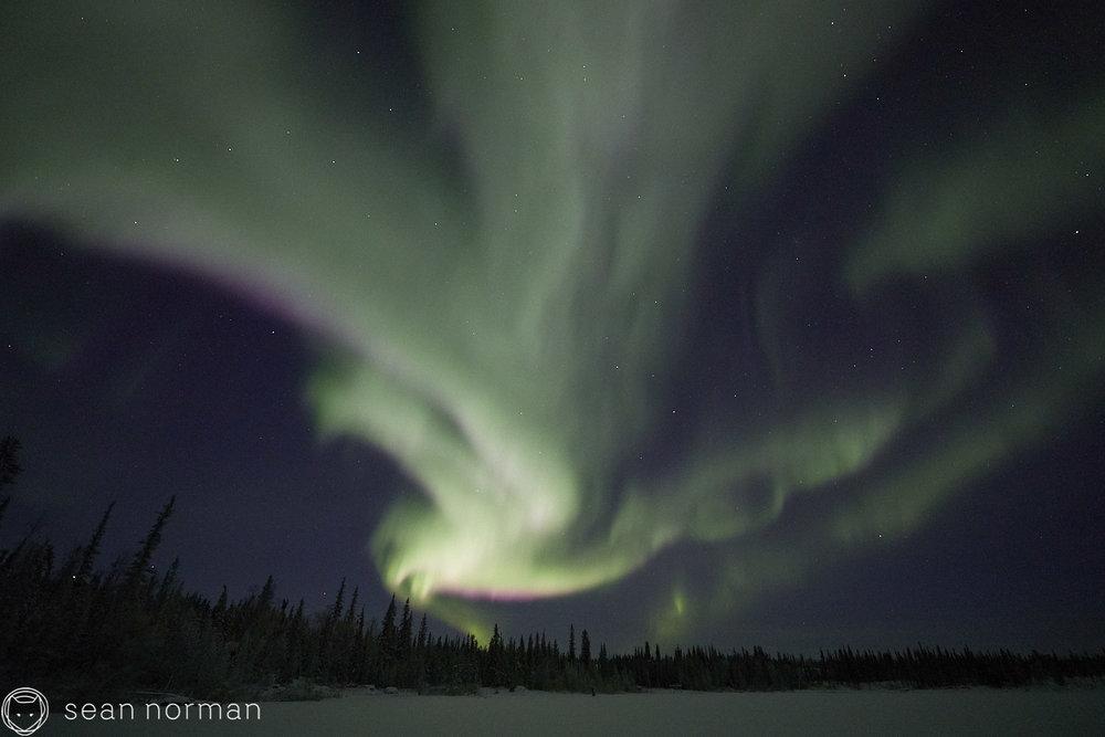 Sean Norman - Yellowknife Aurora Hunting Tour - Northern Lights Tour Guide - 3.jpg