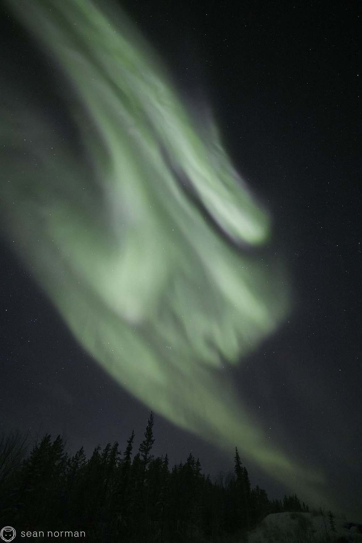 Yellowknife Aurora Tour - Northern Lights Canada - Sean Norman Guide - 5.jpg