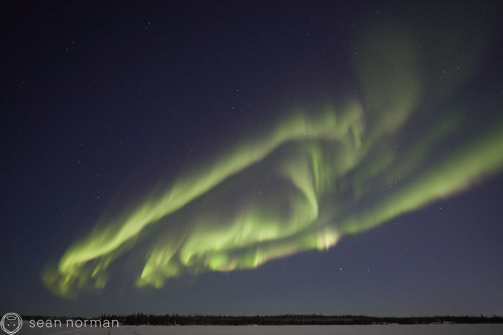 Yellowknife Aurora Tour - Northern Lights Canada - Sean Norman Guide - 2.jpg