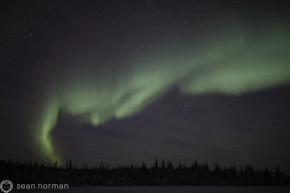 Sean Norman - Yellowknife Aurora Chaser - Northern Lights Guide - 13.jpg