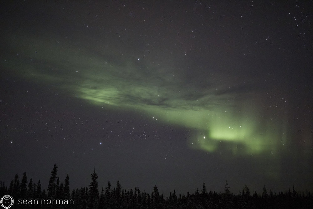 Sean Norman - Yellowknife Aurora Chaser - Northern Lights Guide - 03.jpg