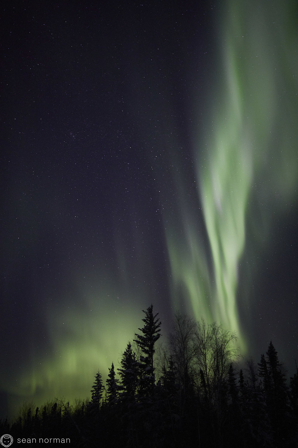 Sean Norman - Yellowknife Aurora Chaser - Northern Lights Guide - 03.jpg