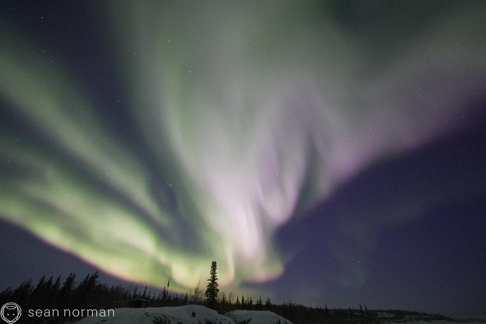 Sean Norman - Yellowknife Aurora Chaser - Northern Lights Guide - 07.jpg