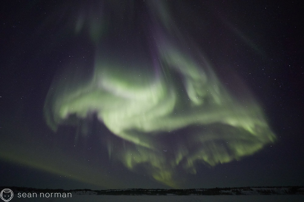 Yellowknife Aurora Guide - Northern Lights Chasing Tour Canada - 6.jpg