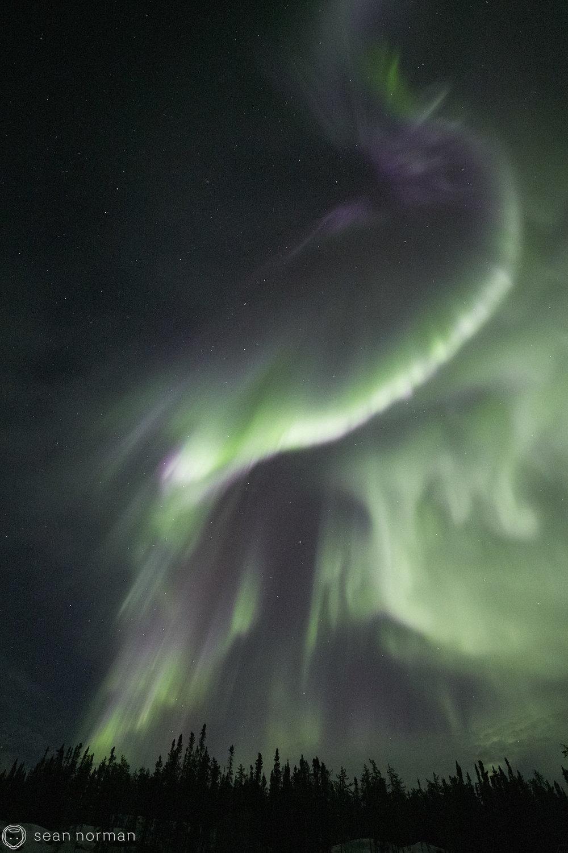 Yellowknife Aurora Tour Guide - Northern Light Photography - Aurora Chaser - 09.jpg