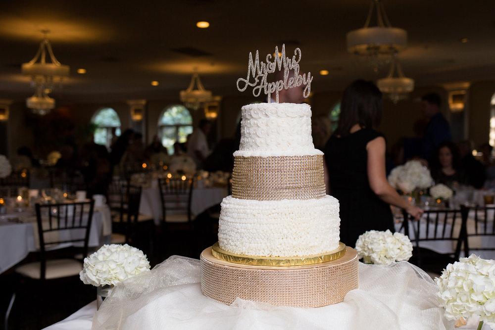 Koteckis Buffalo Wedding Photographer 0489.jpg
