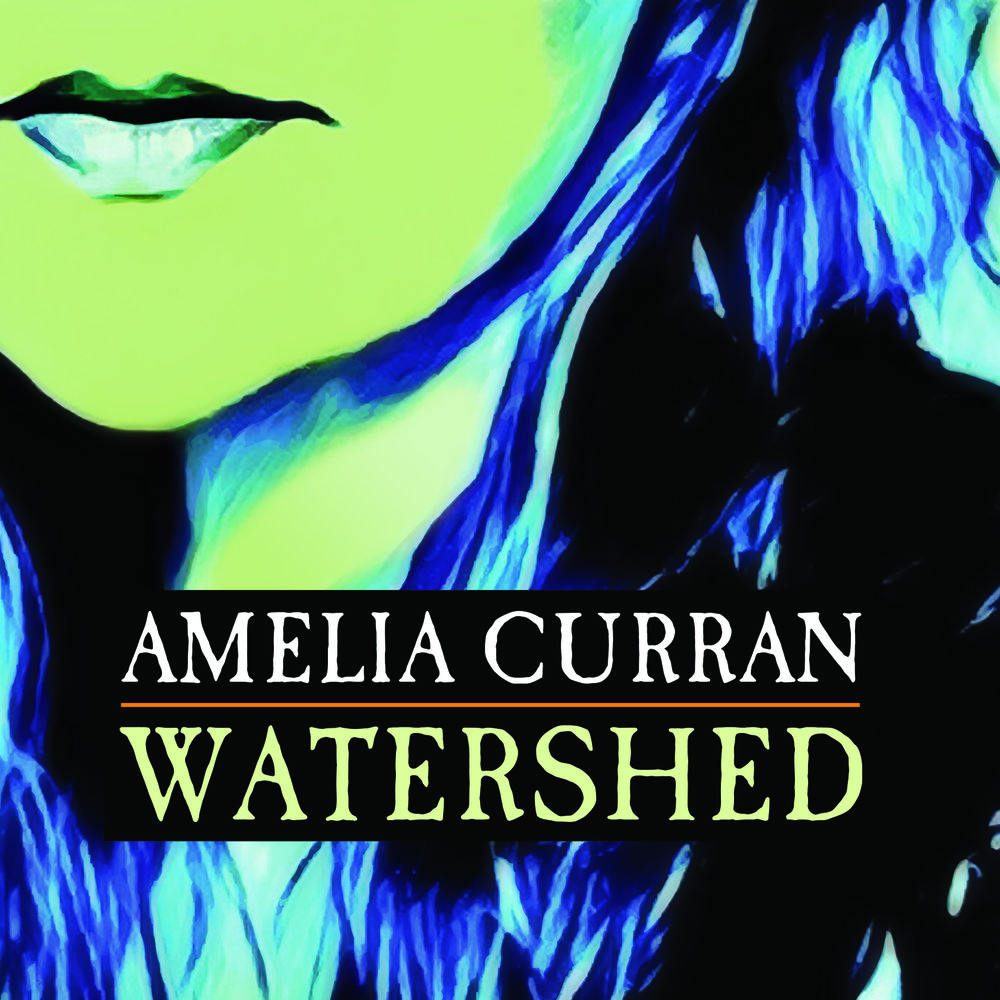Amelia Curran - Watershed - 2017 (Assistant Engineer)