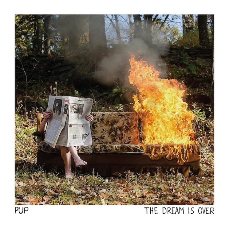 Pup - The Dream Is Over - 2016 (Assistant Engineer)