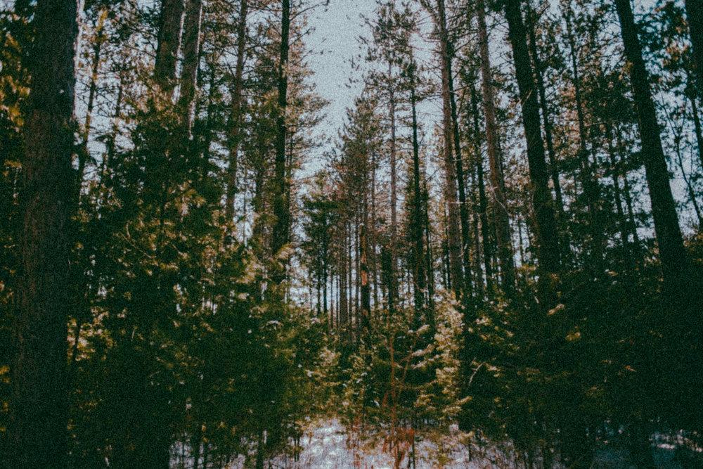 Stills-15.jpg