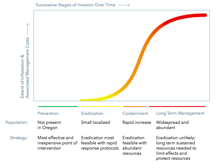 THIS DIAGRAM, DERIVED FROM SEVERAL DEPICTIONS OF THE INVASIVE SPECIES CURVE, WAS CREATED BY THE OREGON INVASIVE SPECIES COUNCIL TO HELP MANAGERS UNDERSTAND HOW TO ASSESS THE RISK PRESENTED BY DIFFERENT STAGES OF INVASION. ILLUSTRATION BY STUDIO CLEAR.