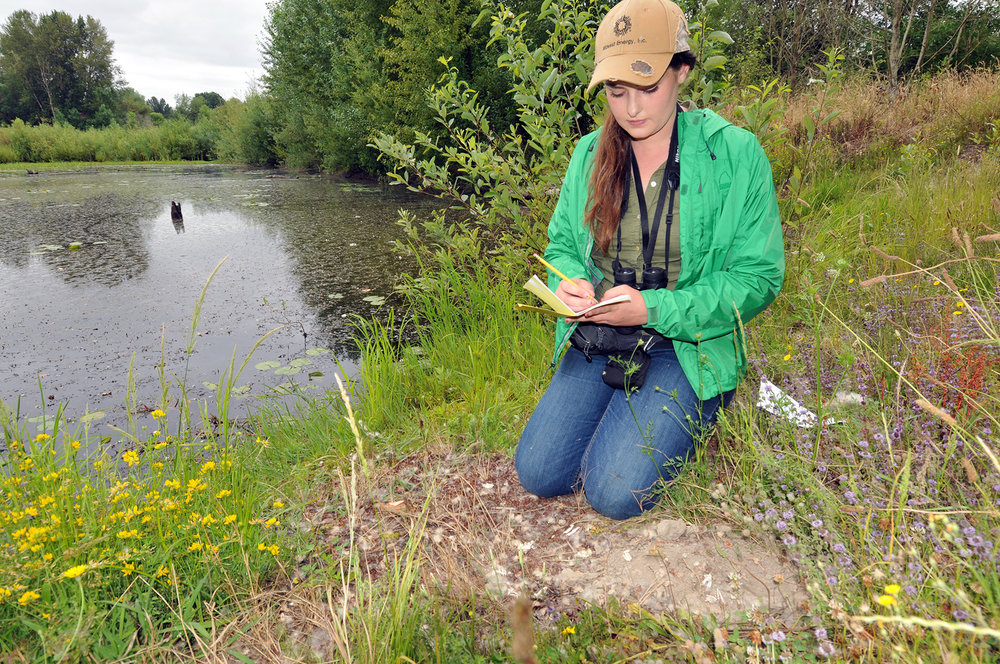 Sarah Wilson, Port biologist, makes note of species present as part of monitoring protocols.