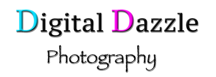 Digital Dazzle Photography