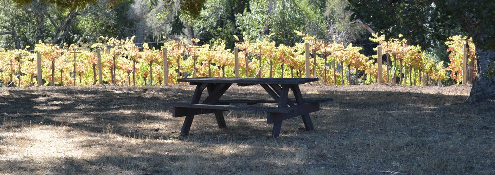 cropped picnic grove.jpg