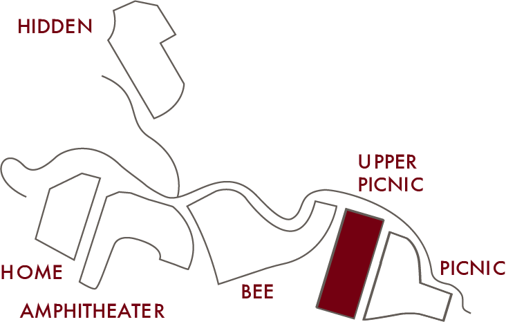 Upper Picnic.png