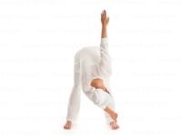 Healthybowel 3.jpg