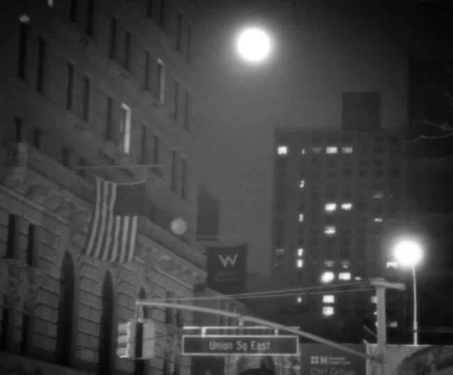 Organically, Jamie Full Moon NYC.JPEG