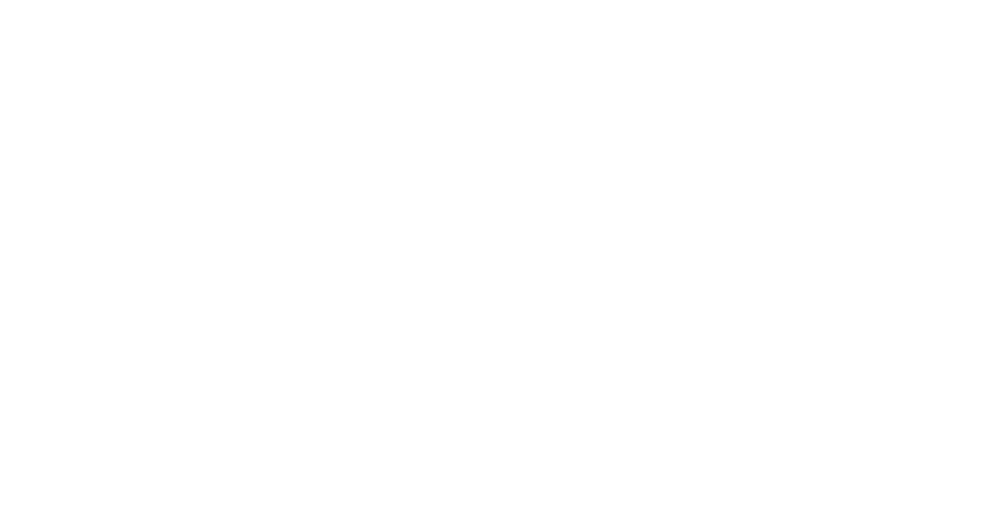 vidak entertainment.png