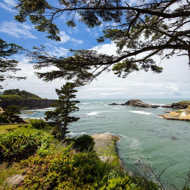 Take a Nature Walk on the Oregon Coast
