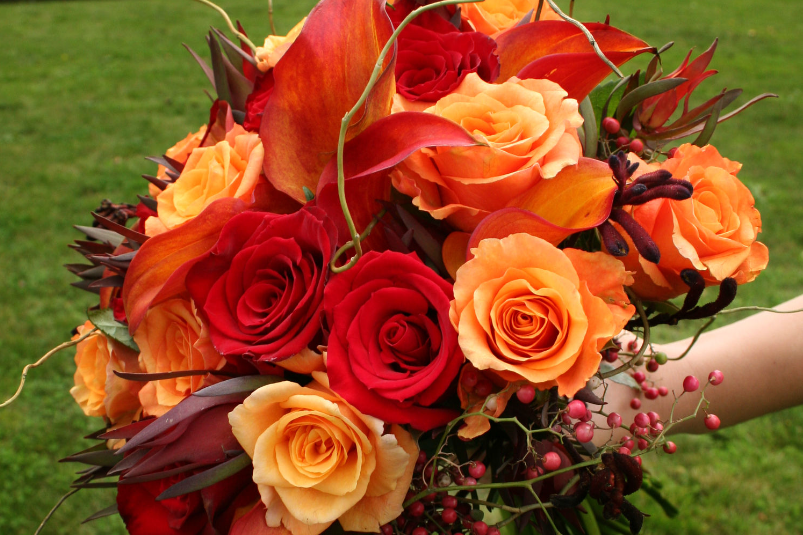 Flora D' Amore by Stadium Flowers 425-339-2419 EMAIL Come visit our Exclusive Wedding Studio! Stadium Flowers created an elegant and fun environment for brides to create their perfect wedding experience.