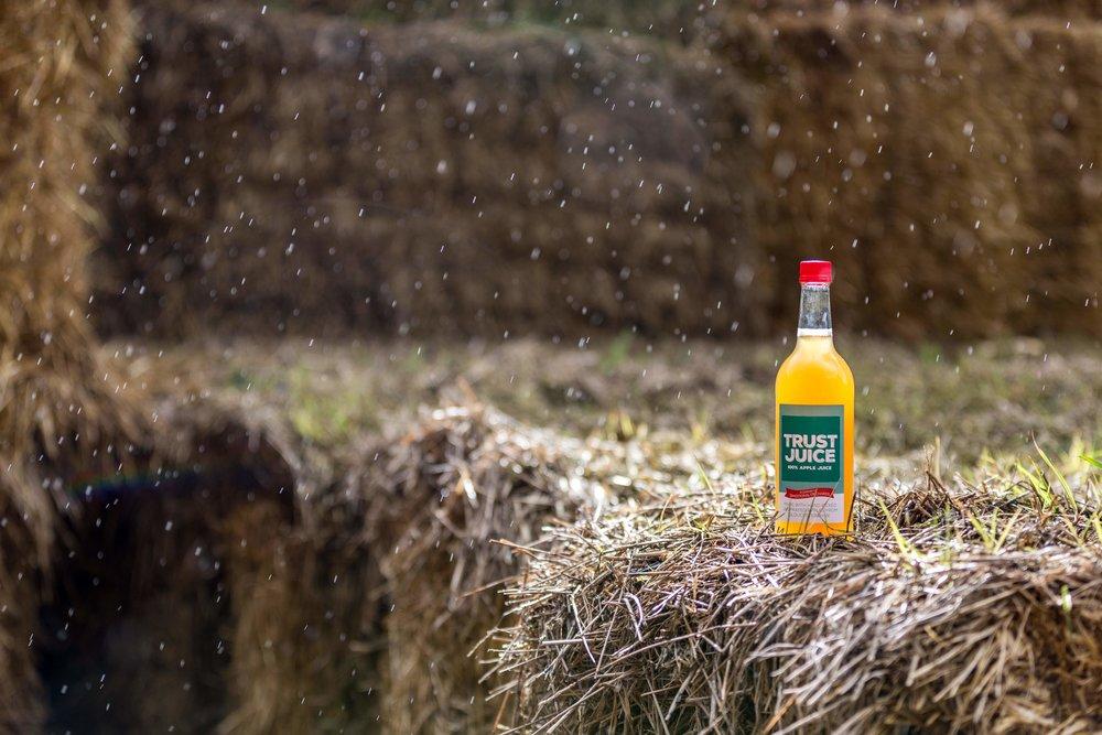 Trust Juice Straw Rain v2.jpg