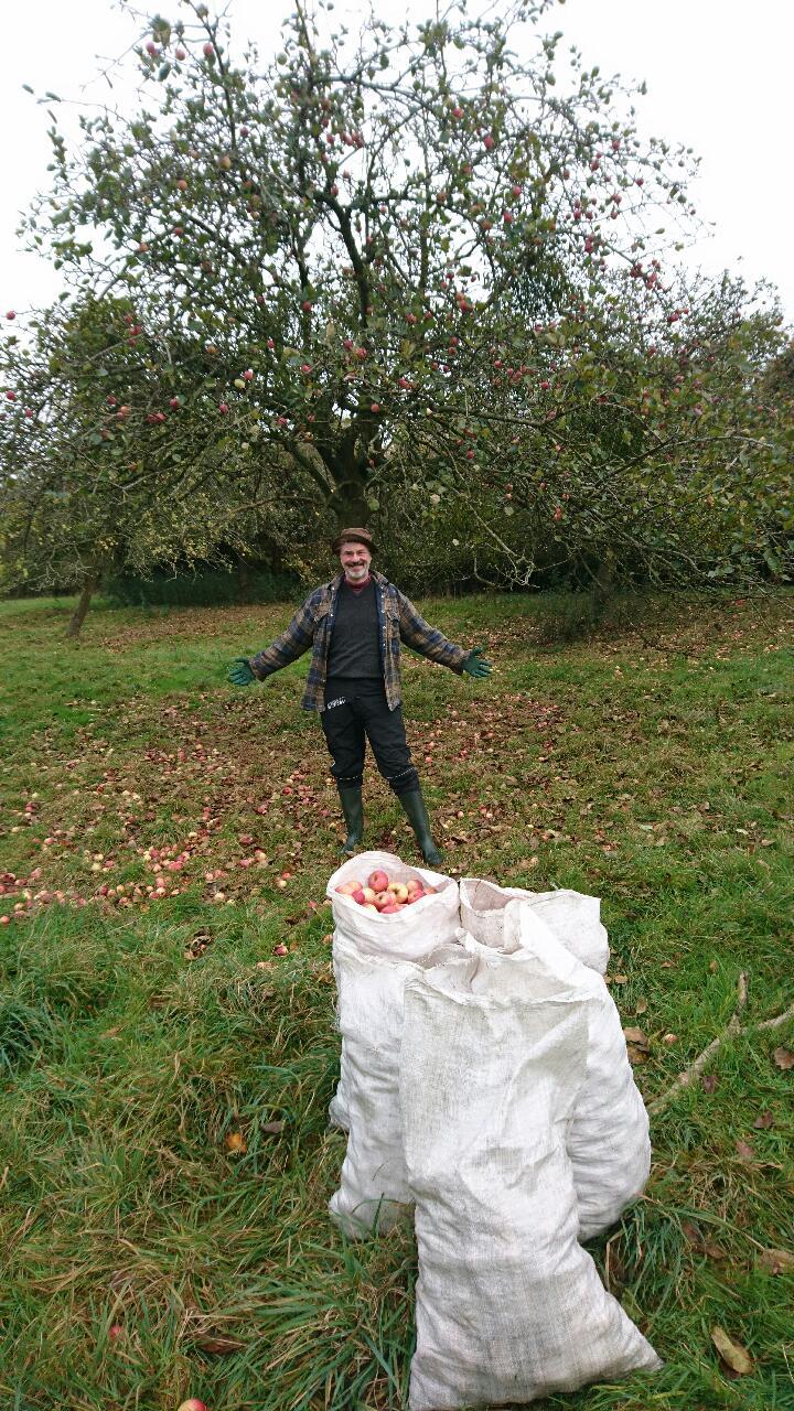 Steve - friend, humourist, apple-picker