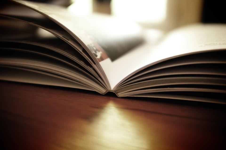 book-1867716_960_720.jpg