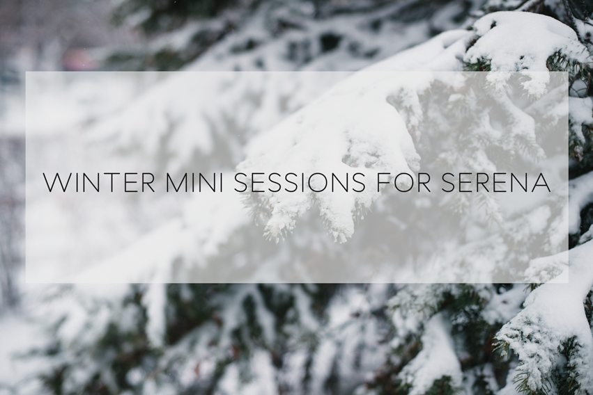 banner_wintersessions