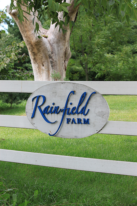 Rainfield Farm