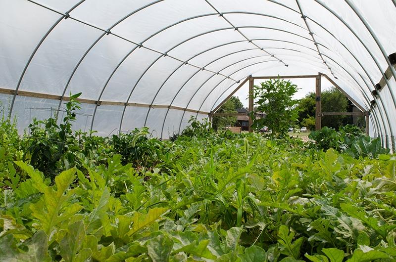 farmhop-13.jpg