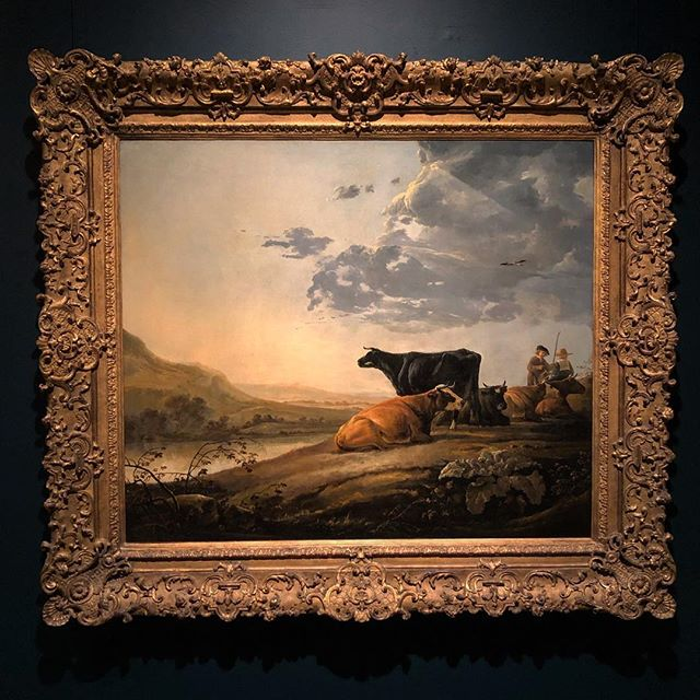 Dutch Masterpieces @metmuseum. I love paintings of cows! Aelbert Cuyp (Dutch 1620-91) #happythanksgiving #I❤️ny