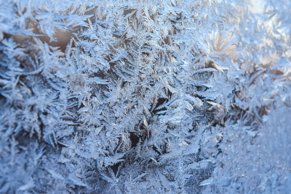 A light film of frost crisscrosses my windowpane on one of many winter mornings when the local temperature dropped below zero.