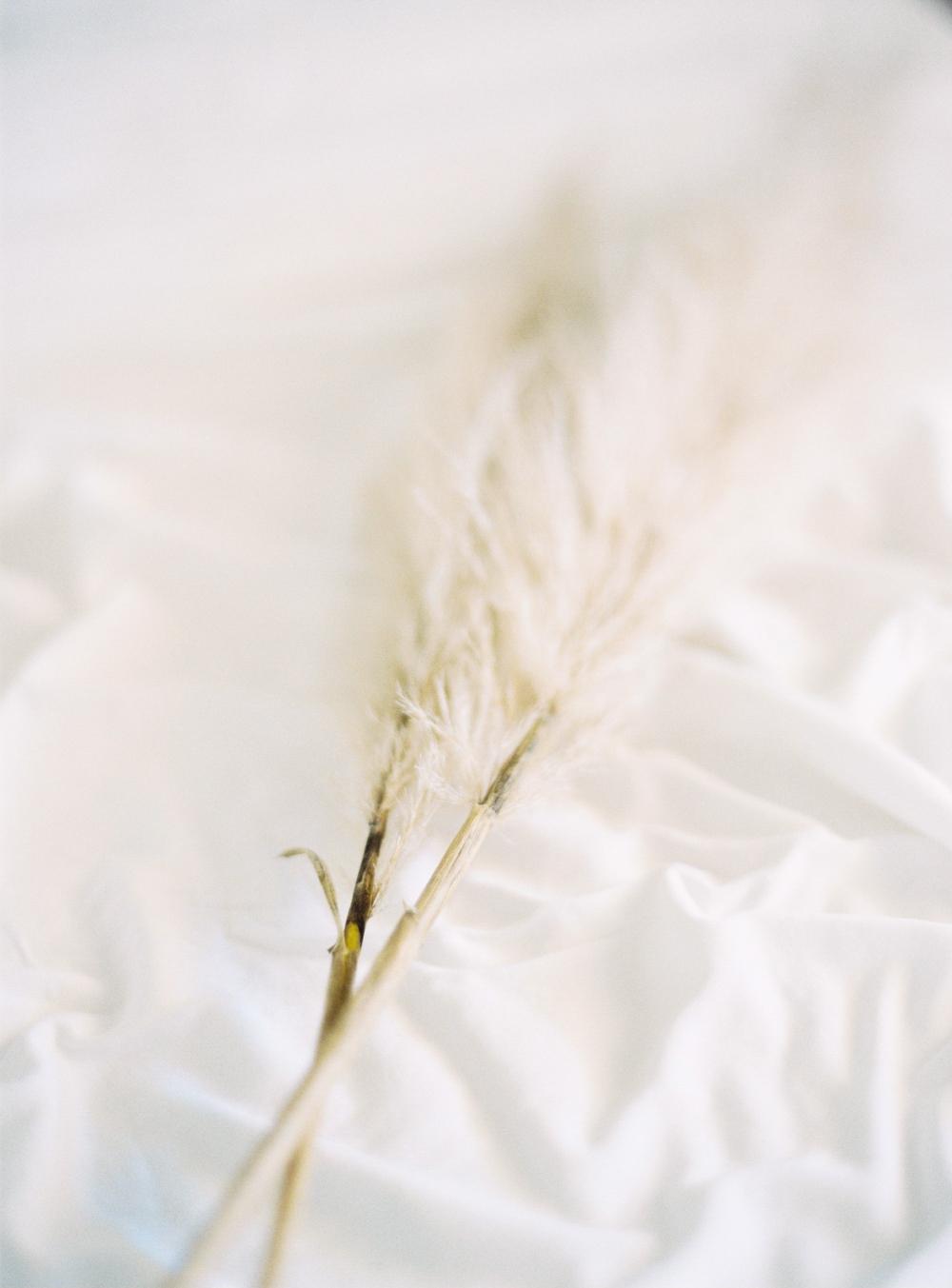 00015- Firgrove Bridal Boudoir_.jpg