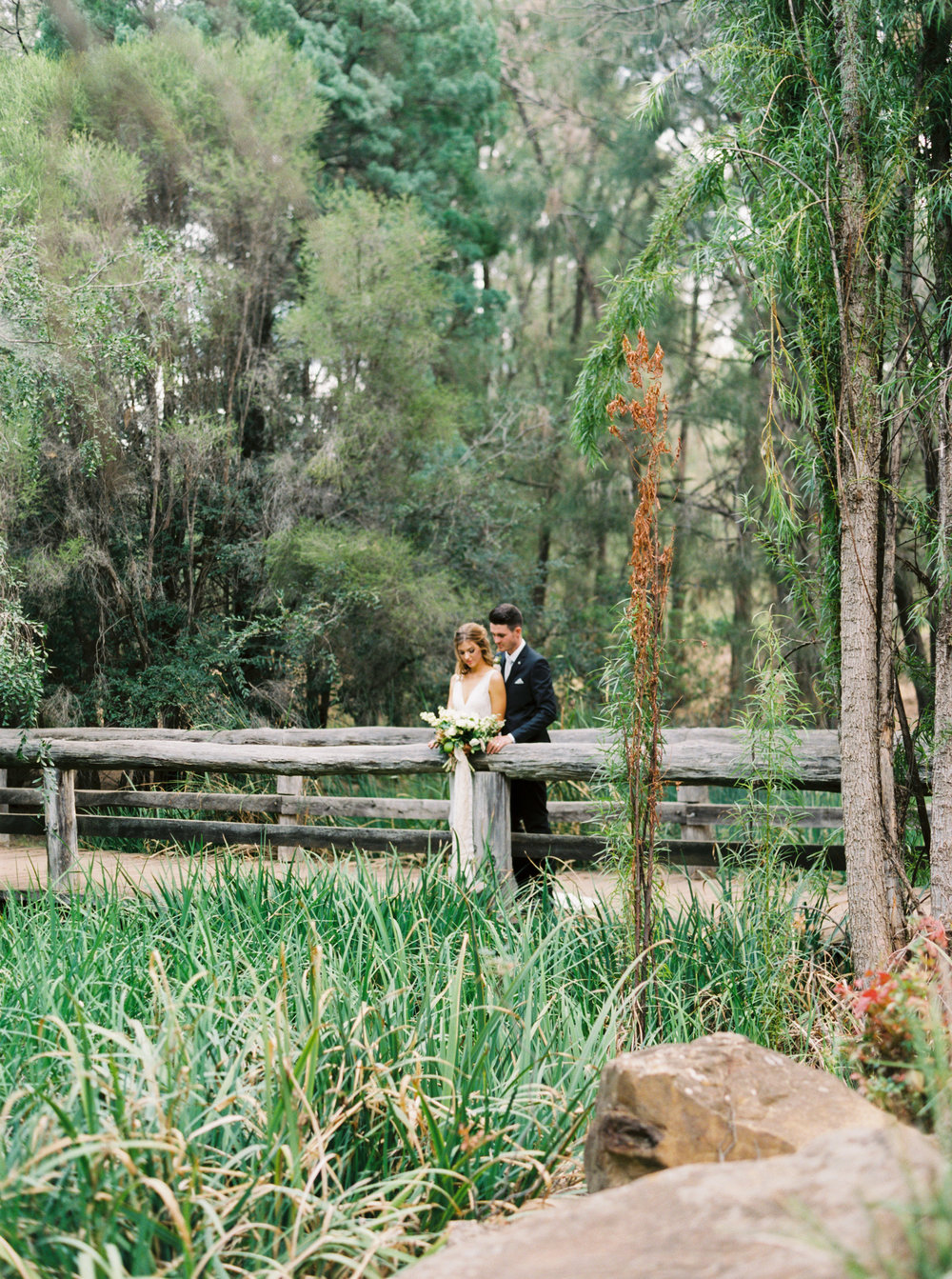 00046- Taronga Zoo Wedding Australia Fine Art Film Photographer Sheri McMahon.jpg