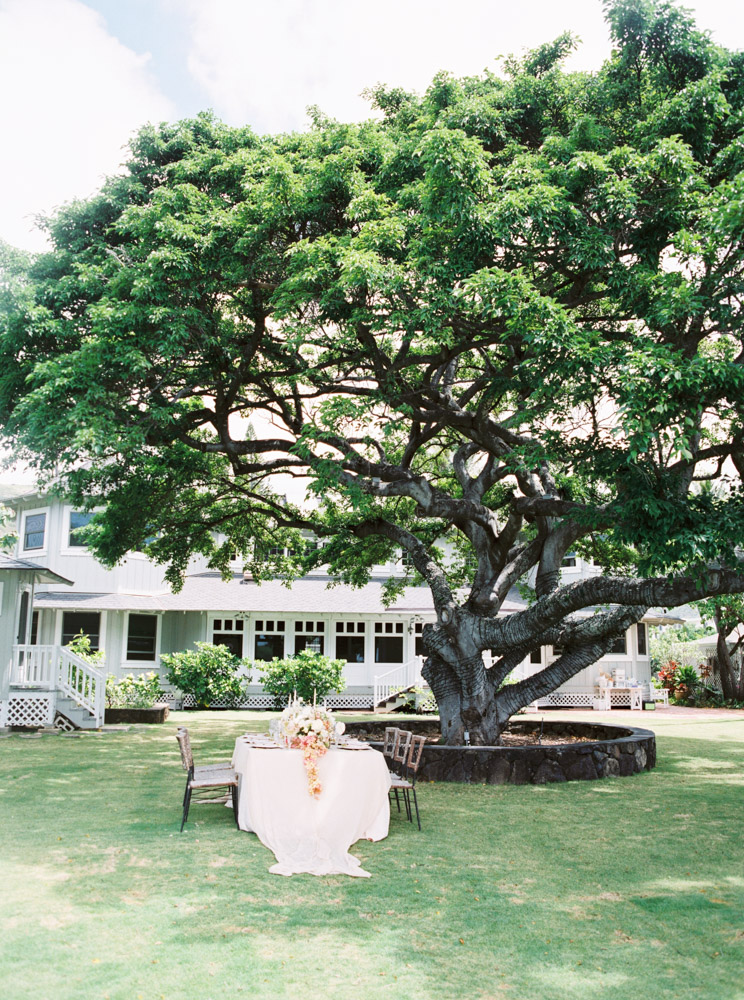 00028- Fine Art Film Hawaii Oahu Wedding Photographer Sheri McMahon.jpg