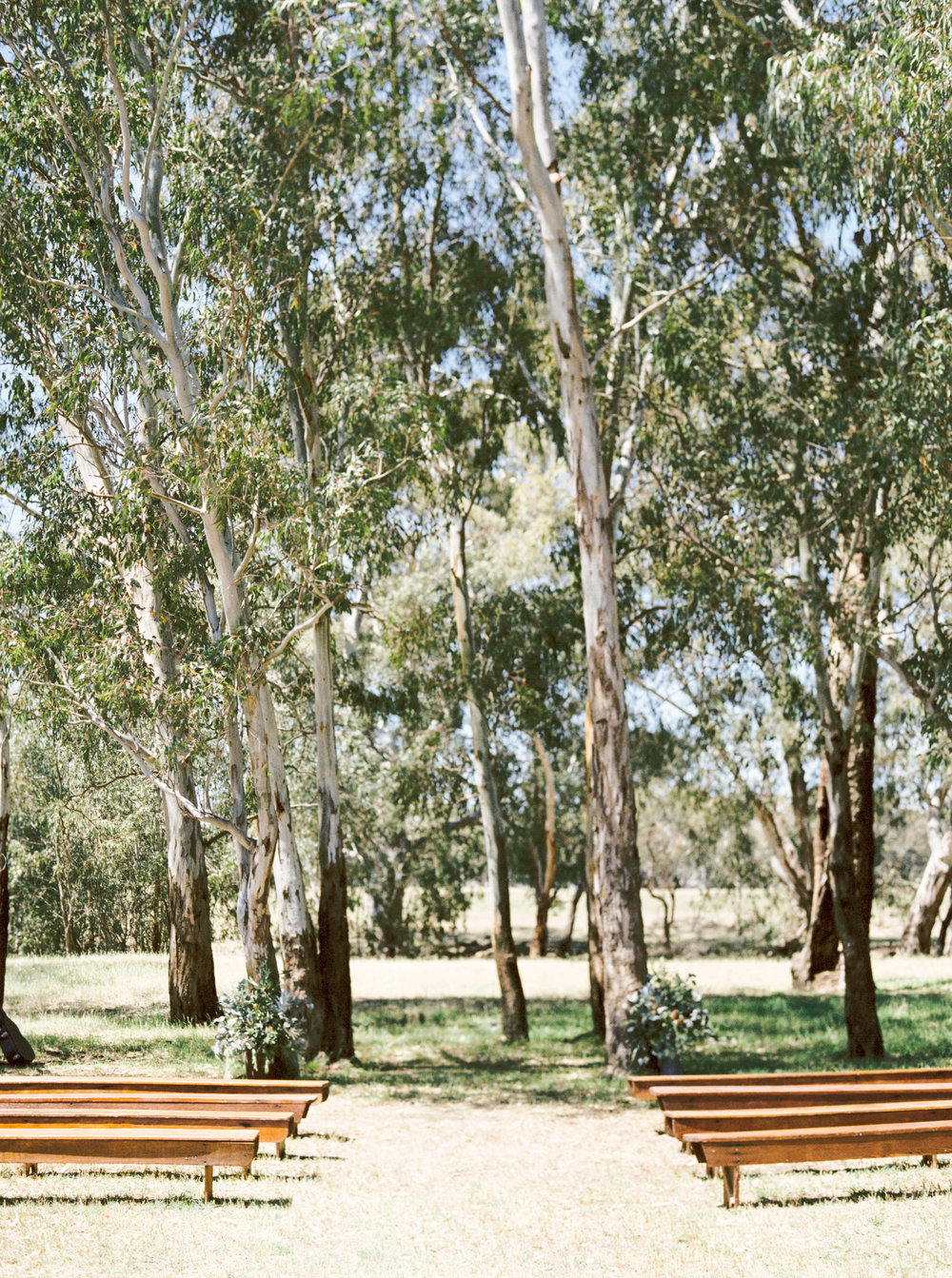00021- Olive Tree Mediterranean Wedding in Mudgee NSW Australia Fine Art Film Wedding Lifestyle Photographer Sheri McMahon_.jpg