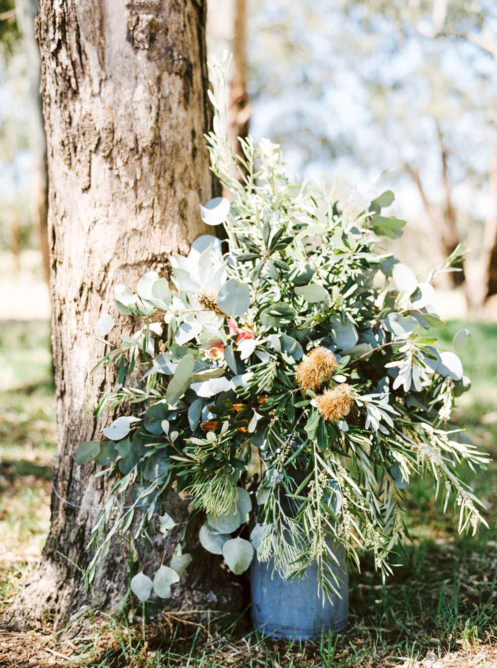 00023- Olive Tree Mediterranean Wedding in Mudgee NSW Australia Fine Art Film Wedding Lifestyle Photographer Sheri McMahon_.jpg