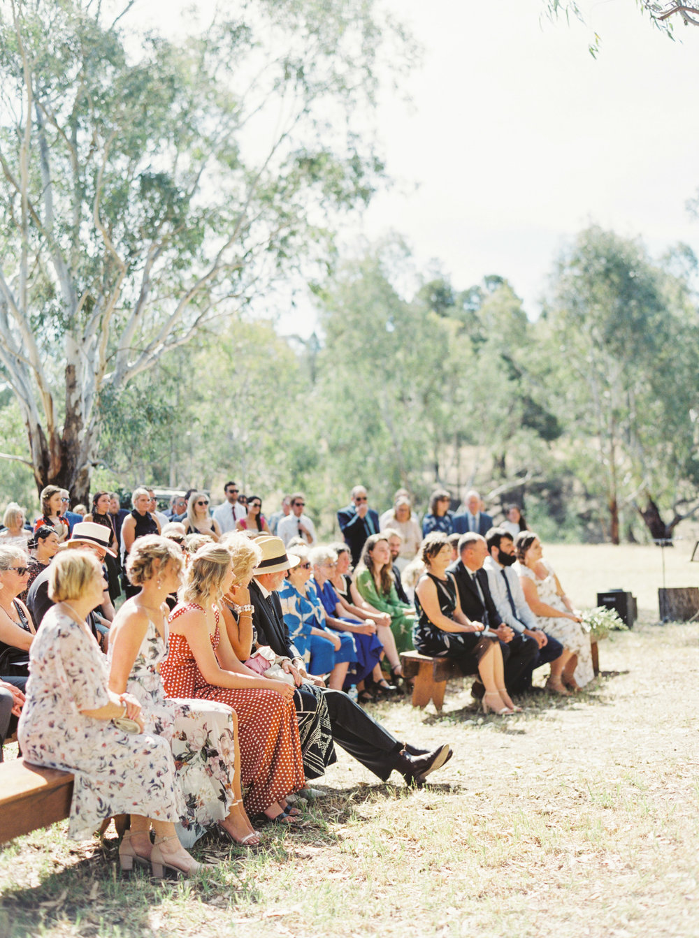 00028- Olive Tree Mediterranean Wedding in Mudgee NSW Australia Fine Art Film Wedding Lifestyle Photographer Sheri McMahon_.jpg