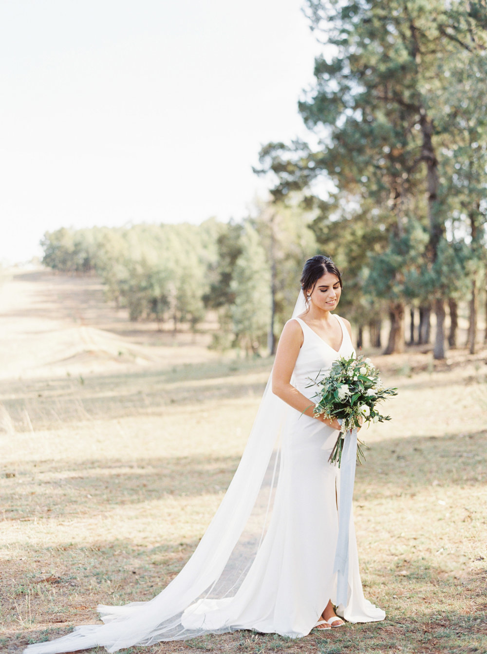 00045- Olive Tree Mediterranean Wedding in Mudgee NSW Australia Fine Art Film Wedding Lifestyle Photographer Sheri McMahon_.jpg