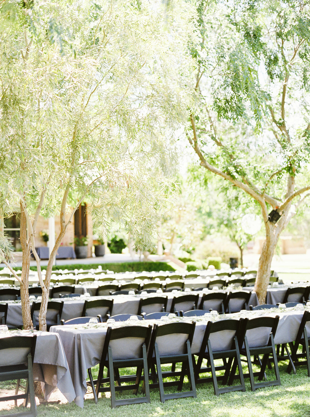 00068- Olive Tree Mediterranean Wedding in Mudgee NSW Australia Fine Art Film Wedding Lifestyle Photographer Sheri McMahon_.jpg
